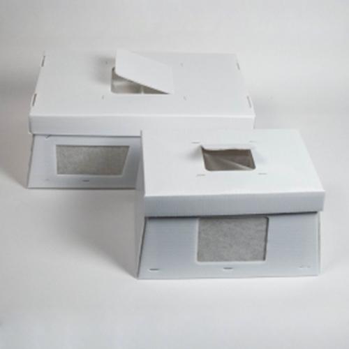 Scatola trasporto autoclavabile piccola per topi con filtri e finestra in PC per ispezione